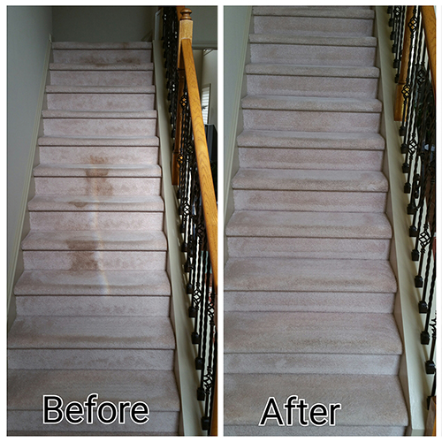 Carpeted Stairs Cleaning