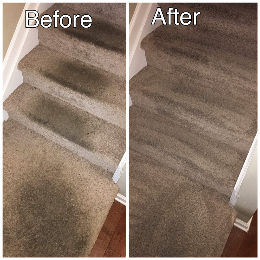 Carpeted Staircase Cleaning
